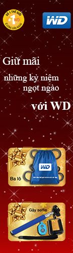 wd promotion